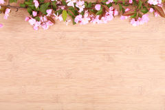 Oszałamiająco peonie na drewnianym tle Obrazy Stock