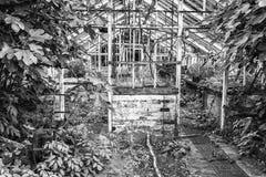 Oszałamiająco rocznik Wiktoriańskiej ery lewicy ro szklarniana ruina w starym En Zdjęcie Royalty Free
