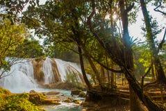 Oszałamiająco widok Agua Azul siklawa Chiapas, Palenque, Meksyk Zdjęcie Royalty Free