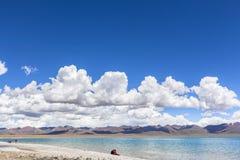 Oszałamiająco widok Namtso jezioro Zdjęcie Royalty Free