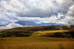 Oszałamiająco widok tepui zakrywający z chmurami i svanna w miękkiej części g Fotografia Stock