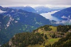 Oszałamiająco widok wysokogórski las, jeziorny Brienz, pasmo górskie i mgła w Schynige Platte, Szwajcaria Część Fotografia Stock