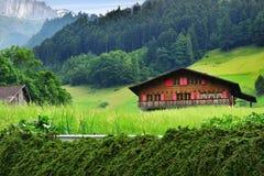 Oszałamiająco wysokogórski krajobraz w kantonie Uri, Szwajcaria Obraz Stock