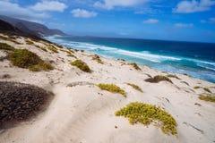 Oszałamiająco zdewastowany krajobraz piasek diuny i pustynne rośliny atlantycka linia brzegowa z ocean fala Baia Das Gatas Zdjęcie Stock