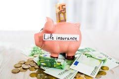 Oszczędzania pojęcie Prosiątko bank z wpisowym ubezpieczenie na życie Zdjęcia Stock