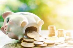 Oszczędzania prosiątka bank z monetami zdjęcie stock