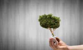 oszczędzanie energetyczna ilustracyjna ładna miękka część Zdjęcia Stock