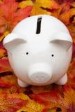oszczędności Zdjęcia Stock