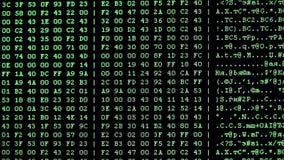 Oszillogramm auf PC-Schirm stock video