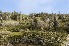 Oszraniającego krajobraz wysoka równina Zdjęcia Stock