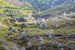 Oszraniającego krajobraz wysoka równina Fotografia Royalty Free