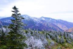 Oszraniającego krajobraz wysoka równina Obraz Stock