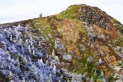 Oszraniającego krajobraz wysoka równina Obrazy Stock