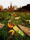 Otaczać trawa Sukhothai Tajlandia zdjęcie stock