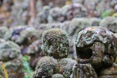 The stone of statues at rain day. The Otagi Nenbutsu ji Temple, Kyoto, Japan Stock Images