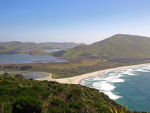 Otago halvö - Nya Zeeland Arkivbild