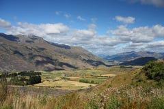 Otago, New Zealand Royalty Free Stock Photo