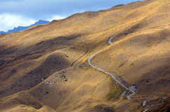Otago - Nova Zelândia Fotografia de Stock
