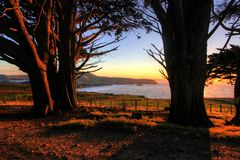Otago Peninsula, Dunedin Stock Images