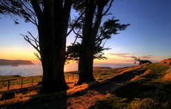 Otago Peninsula, Dunedin Royalty Free Stock Photography