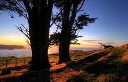 Otago Peninsula, Dunedin. At sunrise royalty free stock photography