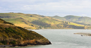 Otago Peninsula Panorama Royalty Free Stock Image