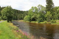 Otava-Fluss, Tschechische Republik stockbilder
