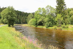 Otava River, Czech Republic royalty free stock photo