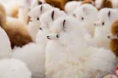OTAVALO, ECUADOR - MEI 17, 2017: Het mooie Andes kleine lamastuk speelgoed textielgaren en langs geweven dient wol, in wit in Royalty-vrije Stock Fotografie
