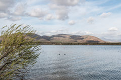 Otay jezior okręgu administracyjnego parka krzaki, góry i Chmurny niebo, Zdjęcie Royalty Free