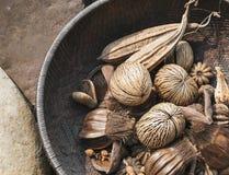 Othalanga secco ha asciugato l'ornamento delle piante in ciotola di legno Fotografia Stock Libera da Diritti