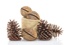 Othalanga - Suicide tree seed and cedar pine cone in sacks fodde Royalty Free Stock Photo