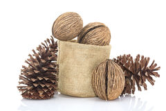 Othalanga - Suicide tree seed and cedar pine cone in sacks fodde Stock Image