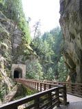 Othello Canyon Tunnels und Fälle Stockfotografie