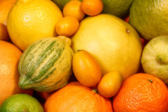 Other citrus fruits, close-up Royalty Free Stock Image
