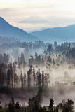 The Other Side in Bromo Royalty Free Stock Photo