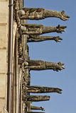 Othic style decoration, Paris, France. Dogs, gargoyle, demons or monsters on roof and gothic style decoration, Paris, France Royalty Free Stock Image