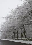 Otley Chevin, UK i snön Arkivfoton