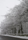 Otley Chevin, UK in the snow. Snow covered trees alongside country road and behind stone wall stock photos