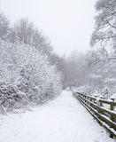 Otley Chevin, UK in the snow. Woodland public footpath covered in snow during the winter stock images