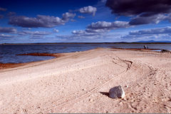 Otmochow Lake, Poland Royalty Free Stock Photography