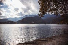 Otoño amarillo de las hojas en el lago Bled en Eslovenia con objeto de la isla imagen de archivo libre de regalías