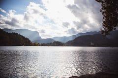 Otoño amarillo de las hojas en el lago Bled en Eslovenia con objeto de la isla foto de archivo