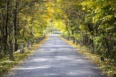 Otoño coloreado y un camino viejo con los jalones Imagenes de archivo