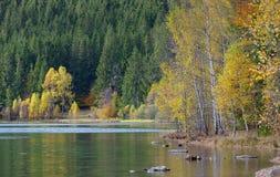 Otoño con el follaje amarillo, reflejado en el lago Fotografía de archivo libre de regalías