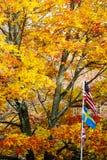 Otoño con tres banderas Fotos de archivo