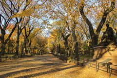 Otoño de Central Park Nueva York Fotografía de archivo