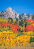 Otoño de Colorado Foto de archivo libre de regalías