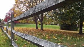 Otoño de la cerca Imagen de archivo libre de regalías