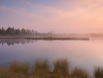 Otoño de la madrugada en el lago de la montaña en la atmósfera soñadora, árbol en la isla en centro Foto de archivo libre de regalías